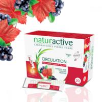 Naturactive Phytothérapie Fluides Solution buvable Circulation 20 Sticks/10ml à STRASBOURG