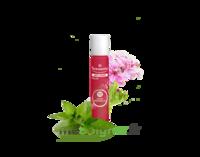 PURESSENTIEL ANTI-PIQUE Roller 11 huiles essentielles à STRASBOURG