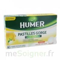HUMER PASTILLE GORGE à l'etrait sec de thym 24 pastilles à STRASBOURG