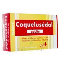 COQUELUSEDAL ADULTES, suppositoire à STRASBOURG