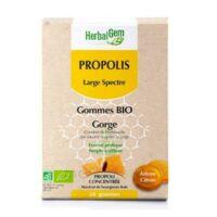 Herbalgem Propolis large spectre Gomme bio B/24 à STRASBOURG