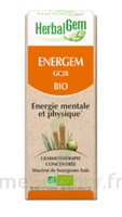 Herbalgem Energem Solution buvable bio Fl cpte-gttes/30ml à STRASBOURG