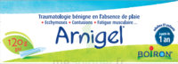 Boiron Arnigel Gel T/120g à STRASBOURG