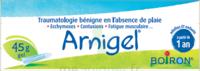 Boiron Arnigel Gel T/45g à STRASBOURG